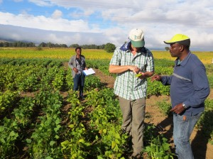 Data collection in Mbeya, Tanzania