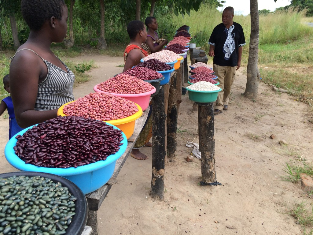 Local common bean market classes present at a road-side stand in Malawi