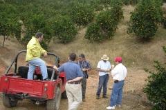 L'Équipe d`experts en visite dans l'orangeraie Valencia ( Hacienda La Balear ) à Adjuntas, Puerto Rico.